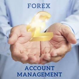 Best Recommended Professional Forex Brokers in